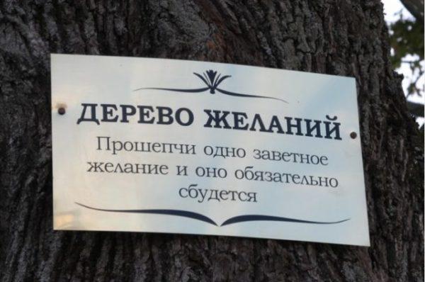 табличка на дереве