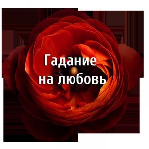 Gadanie-tsvetok-krasnyiy-mak-lyubov-300x300