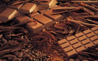 Трактовка — к чему снится есть шоколад во сне от известных прорицателей