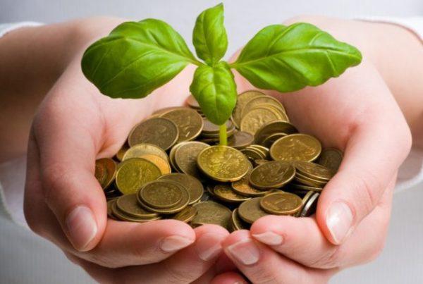 Как приманить к себе деньги и удачу в домашних условиях - Сайт Самоучек