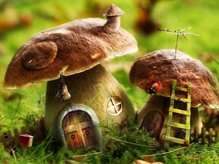 К чему снятся грибы