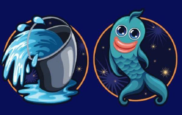 рыбы и водолей