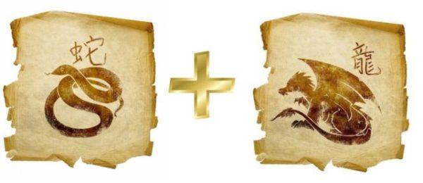 кофе помогло совместимось дракона и дракона оттенки универсальны