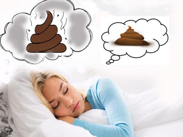 говно во сне
