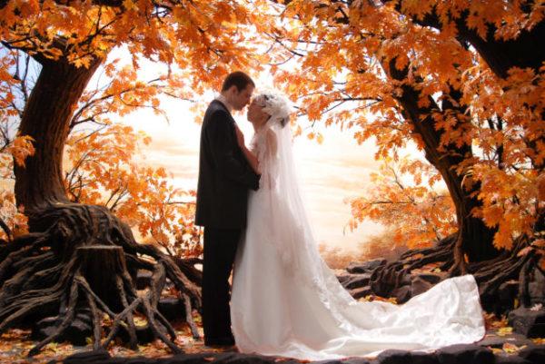 снится свадьба осенью