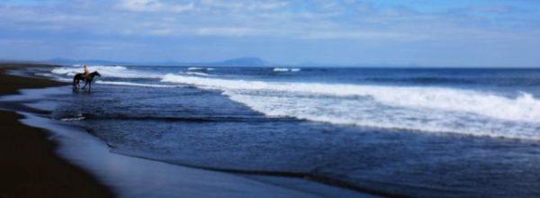 бескрайний океан