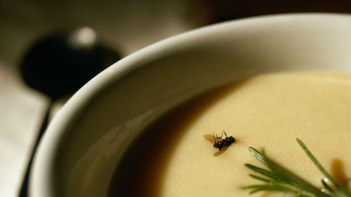 снится муха в еде