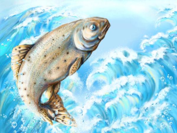 снится рыбалка